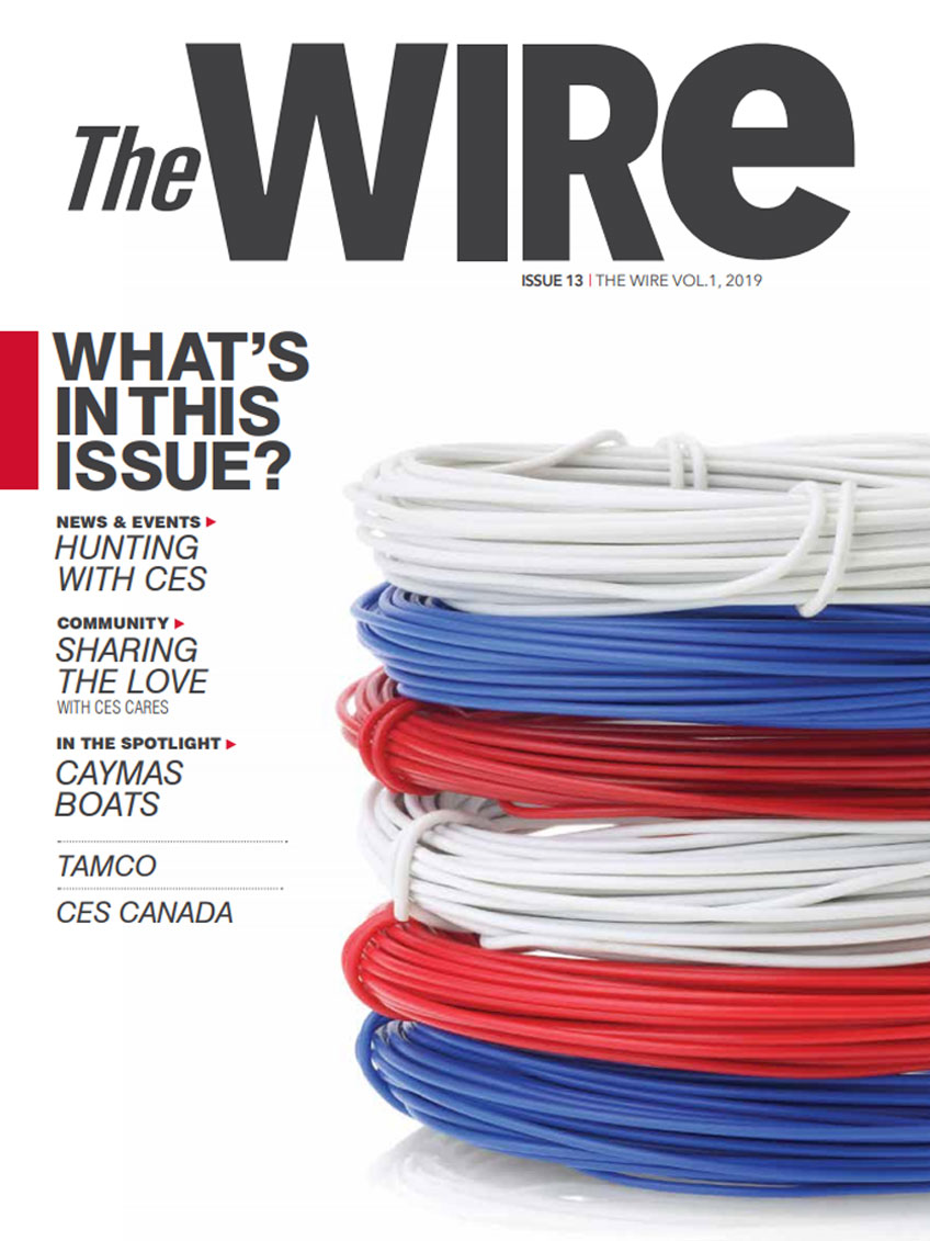 The Wire Issue 13